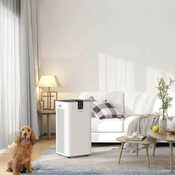 Inofia air purifier fresh air